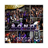 S.O.N.O. 2nd Annual Anniversary Party New Orleans La